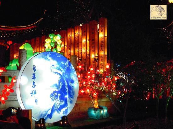 lanterns_in_nanjing_fuzimiao