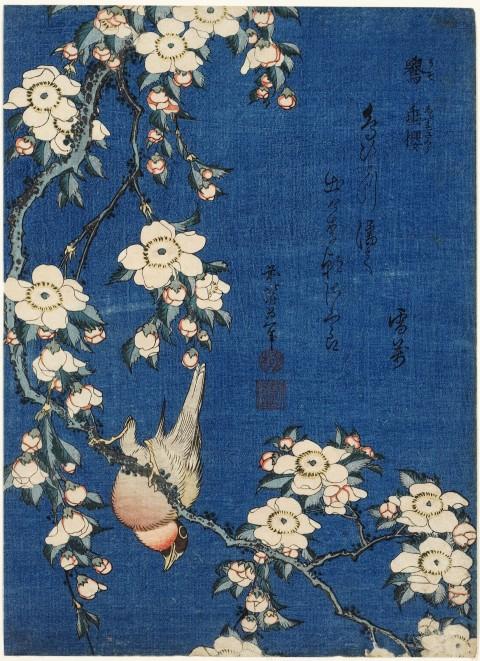 Katsushika-Hokusai-Cardellino-e-ciliegio-piangente-dalla-serie-Piccoli-fiori-1832-ca.-Honolulu-Museum-of-Art.jpg